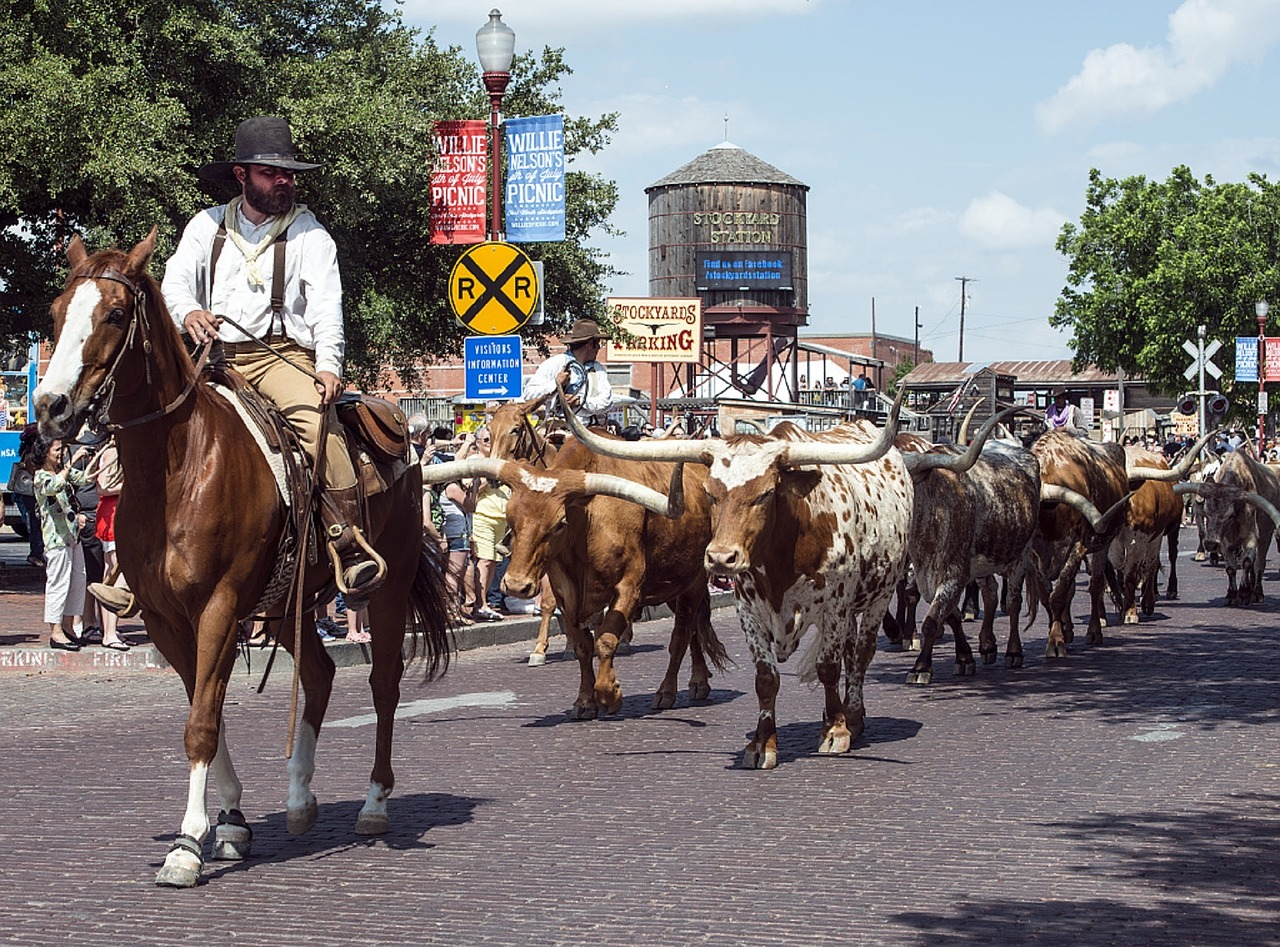 visit fort worth, texas, stock yards
